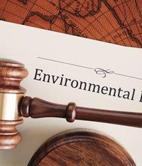 Blog image - Environment Bill